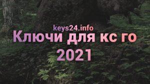 kluchi dlya cs go 2021